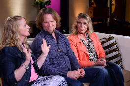Sister Wives - Season 8 Tell All
