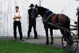 Amish Mafia - The Return