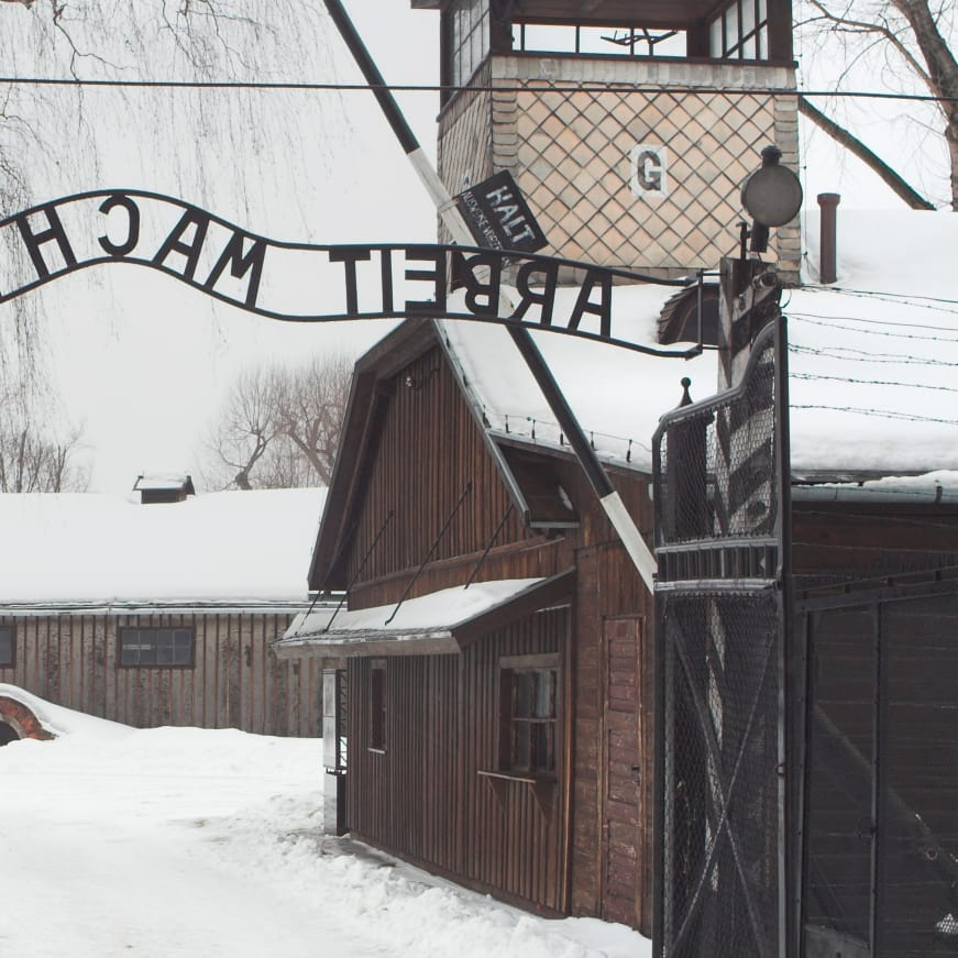Auschwitz: Hitler's Final Solution