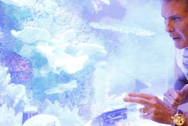 Tanked - The Hoff Gets Tanked