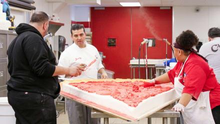Cake Boss - Pizza, Petals & Pandemonium