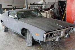 Dallas Car Sharks - Plum Crazy