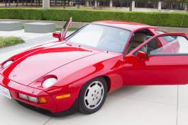 Dallas Car Sharks - Stung by Split-Window Stingray