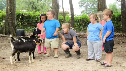 7 Little Johnstons - #GoatPoop