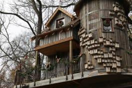 Treehouse Masters - Merry Fishmas!