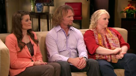 Sister Wives - Season 6 Tell All