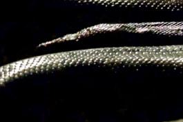 Monster Week 2016 - Devoured: Man-Eating Super Snake Returns