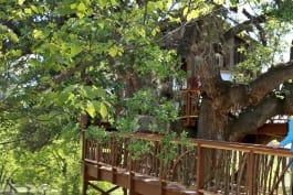 Treehouse Masters - Bon-Appé-Treehouse