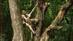 American Tarzan - Coastal Chaos