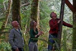 Treehouse Masters - Adventure Headquarters