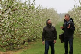 Treehouse Masters - How 'Bout Them Apples