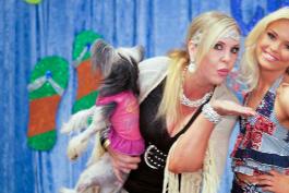 My Big Fat American Gypsy Wedding - Gypsy Mamas Gone Mad