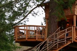 Treehouse Masters - Treehouse Point 2.0!
