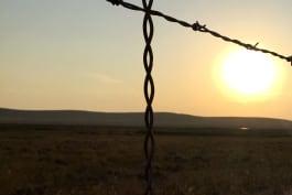 Judgement Day: Prison or Parole - A Second Chance