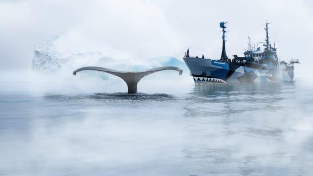 Whale Wars on Free TV App