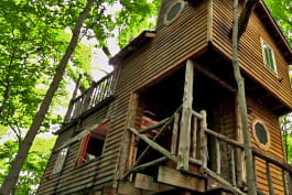 Treehouse Masters - Ultimate Treehouses V