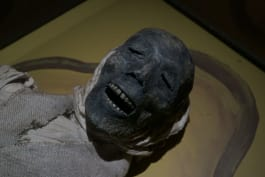 A Haunting - Curse of the Mummy