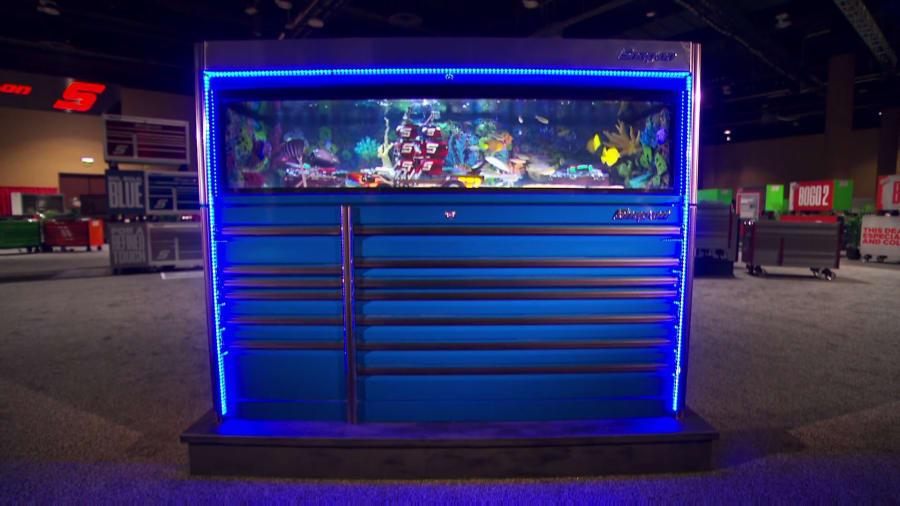 Tanked - Nacho Average Fish Tanks