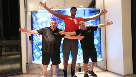 Tanked - The Miami Heat is On!
