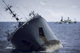 Ocean Warriors - Perseverance
