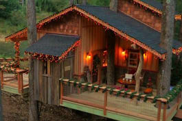 Treehouse Masters - Appalachian Christmas Treehouse