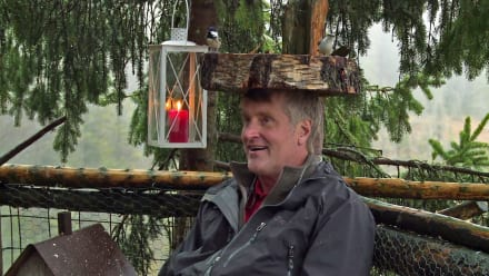 Treehouse Masters - International: Scandinavia
