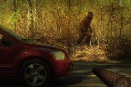 Finding Bigfoot - Skeptic Showdown