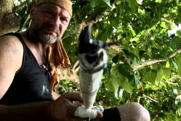 Survivorman - Spear Fishing in Tonga