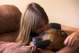 Pit Bulls & Parolees - A Girl Gets the Four-Legged Best Friend She's Been Waiting For