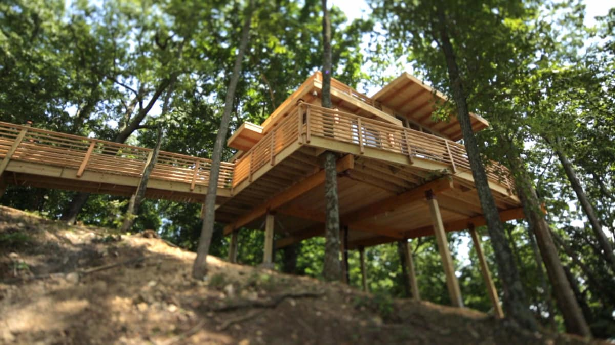 Behind The Build Frank Lloyd Lakehouse Treehouse Masters Animal Planet