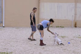 Pit Bulls & Parolees - Obedience Training with Prince Jr.