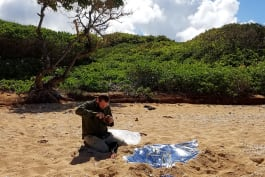 Hacking the Wild - Desert Island Castaway