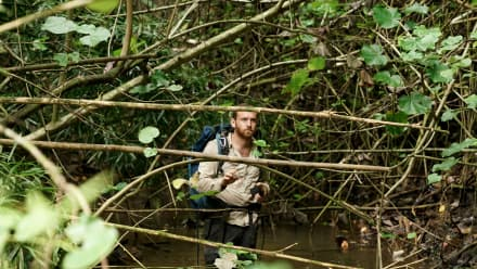 Hacking the Wild - Curse of the Jungle