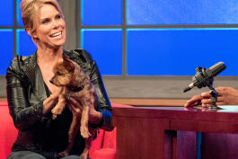 Animal Nation with Anthony Anderson - Cheryl Hines; Dan Cummins; a Baby Camel