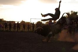 Diesel Brothers - Full of Bull