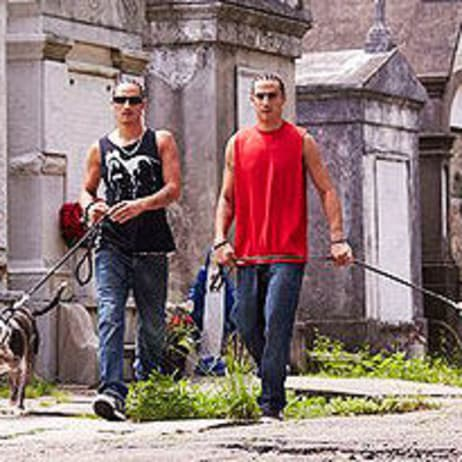 Meet The Cast Pit Bulls Parolees Animal Planet