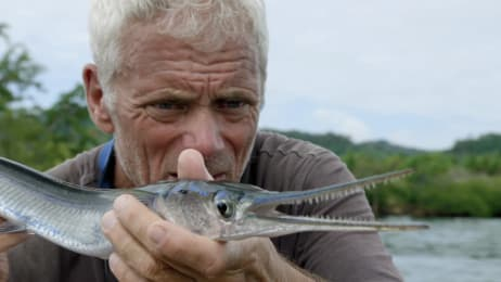 River Monsters Watch Full Episodes More Animal Planet