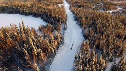 Yukon Men - Dog Days of Winter