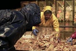 Deadliest Catch - Arctic Mega Storm