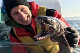 Shark Week - Alien Sharks: Stranger Fins