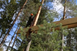Treehouse Masters - A Treehouse Fit for a Viking