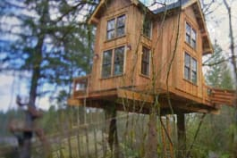 Treehouse Masters - Thrill 'n' Chill Treehouse