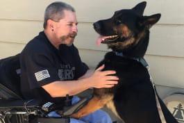 Rescue Dog to Super Dog - Sarge & Suzy Q