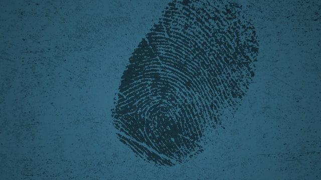 FBI: Criminal Pursuit on FREECABLE TV