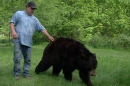 Fatal Attractions - Terror at Bear Farm