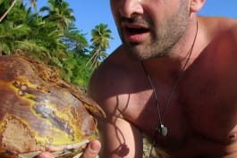 Naked Castaway - Ed Bares All