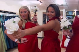 Say Yes to the Dress: Bridesmaids - PhD in Persuasion