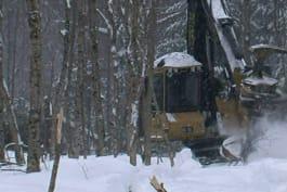 American Loggers - Big Freeze...Big Trouble