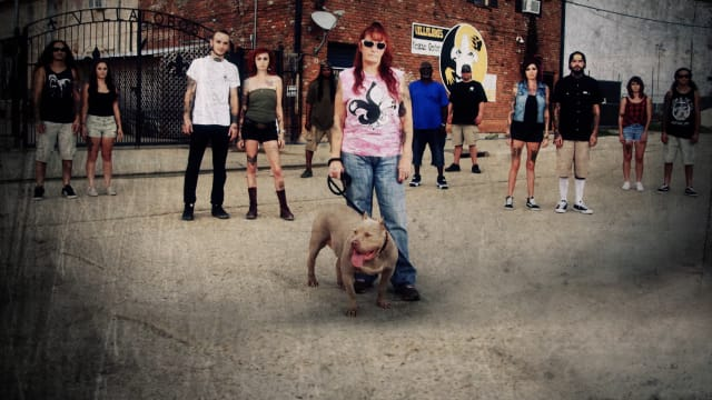 Pit Bulls & Parolees: Waiting for a Forever Home on FREECABLE TV
