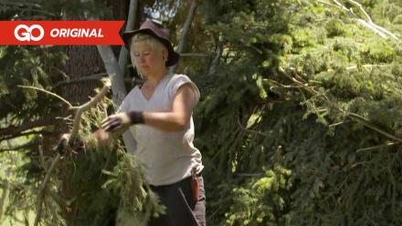 Bushcrafting's Best - Tamra Hyde's Heavy Rain Shelter